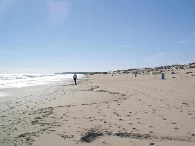 Playa El Moncayo