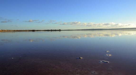 Las Lagunas de Torrevieja