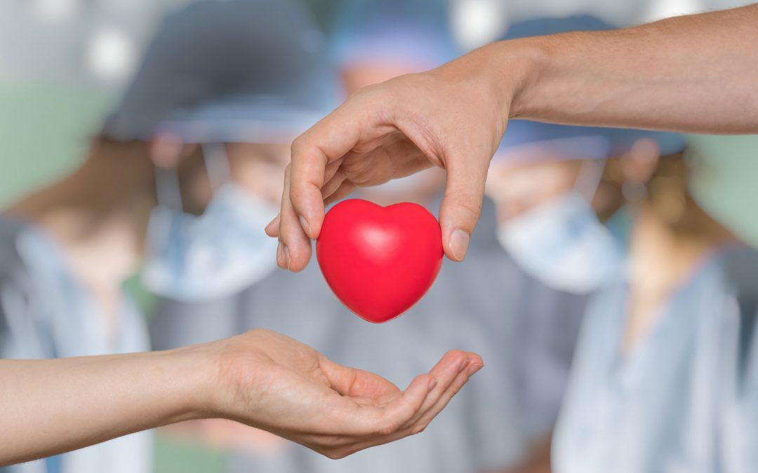 Spain, world's leader in donation and organ transplants
