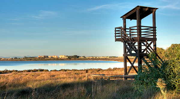4 Free Guided Tours in La Mata Natural Park